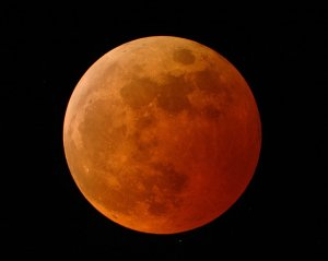 The Moon during the total lunar eclipse. Note the deep orange-red color. [Credit: Doug Murray]