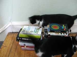 A small representative sample of my relativity books, with my cats Pascal and Harriet for scale.
