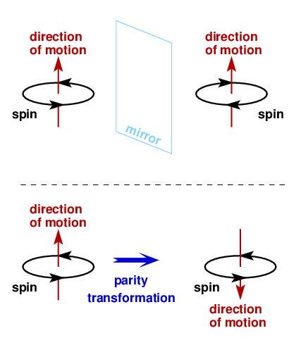 Parity transformations aren't quite the same as mirror images. The upper part of the diagram shows a mirror image, in which the direction of particle motion is left unchanged, while the spin is reversed. A parity transformation, however, leaves spin untouched while it flips the direction of motion. [Credit: moi]