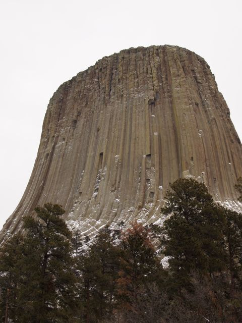 A view of Devils Tower from the base, showing both the columnar structure but also how imposing it is. [Credit: moi]