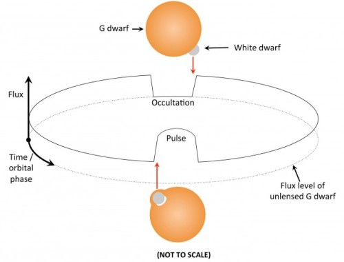 diagram of white dwarf star - photo #29