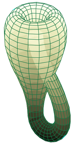Representation of a Klein bottle. As you can see the surface passes through itself, meaning it  can't be made properly in the real world. [Credit:  Tttrung for Wikipedia]
