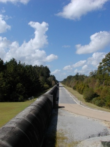 One arm of the LIGO detector near Livingston, Louisiana. [Credit: moi]